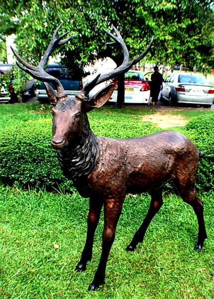 Bronze Deer Buck Statues - PA A-1096