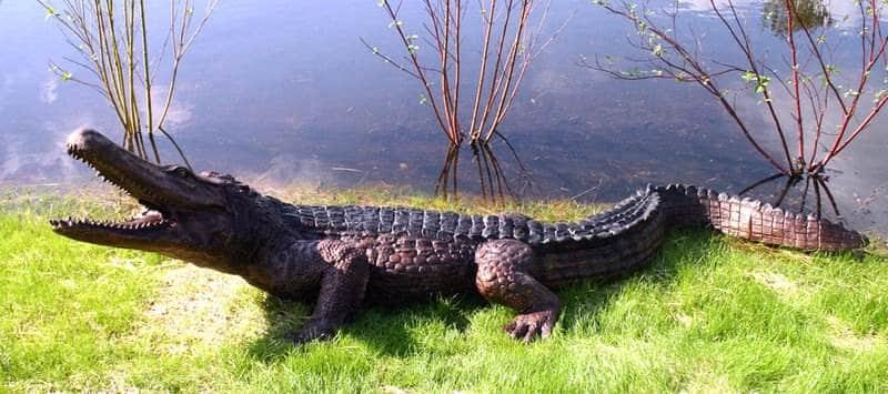 Bronze Alligator Fountains Bronze Crocodile Fountains - DD A270-F